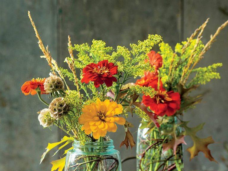 fiori-freschi (13)