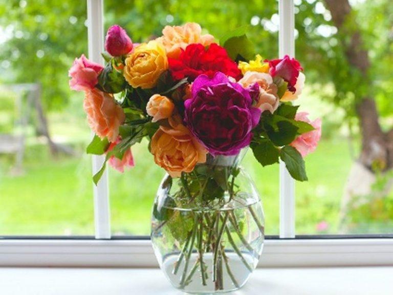 fiori-freschi (7)