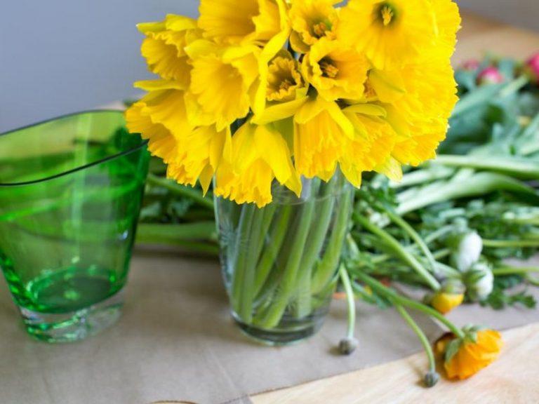 fiori-freschi (9)