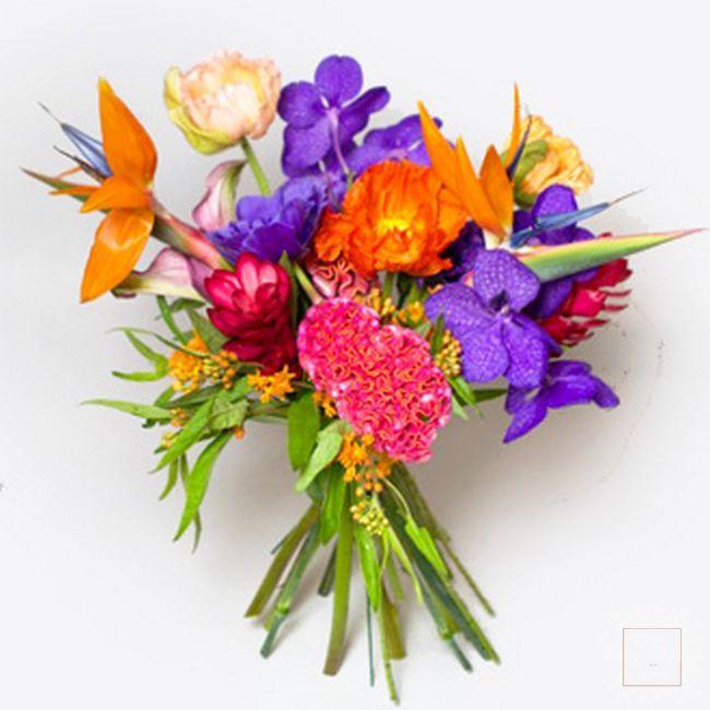 bouquet succo di colore caldo arancio vola rosso