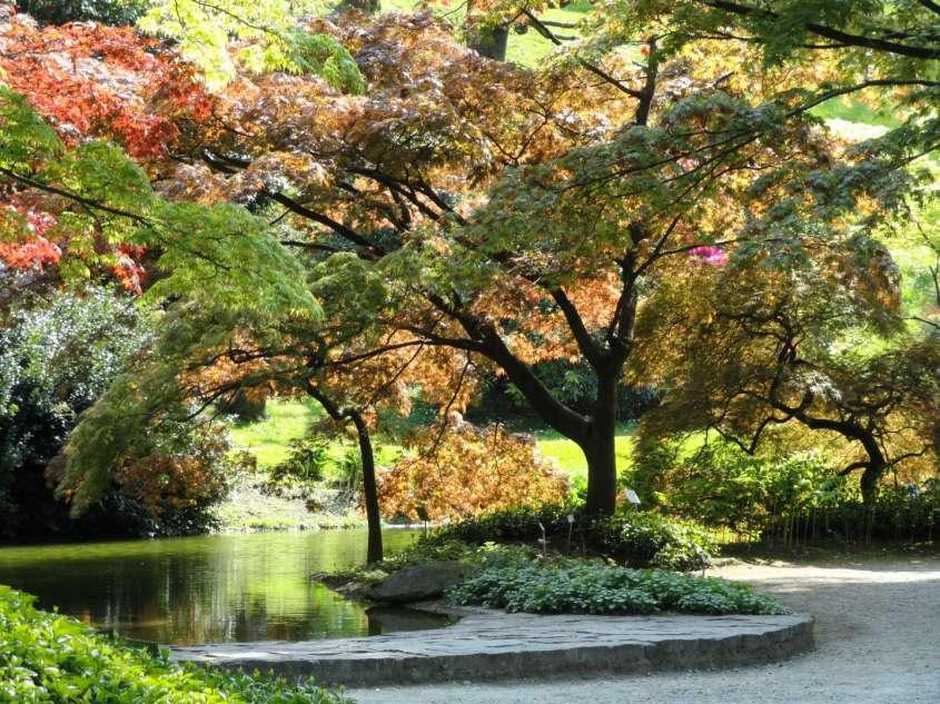 Giardini italiani floradecor for Giardini giapponesi milano